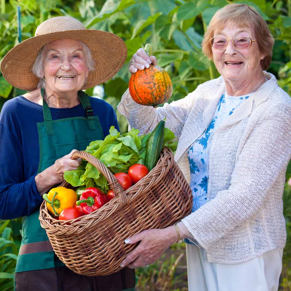 Two women holding up vegetables in the garden.